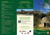 Olivettes du Pays de Nîmes