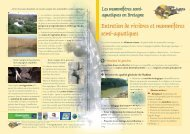 Entretien de rivières et mammifères semi-aquatiques - Groupe ...