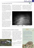 Juin 2012 - Groupe Mammalogique Breton - Page 7