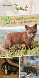 Les mammifères sauvages de la campagne bretonne - Parc naturel ...