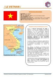 / LE VIETNAM / - ILE-DE-FRANCE INTERNATIONAL