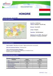 HONGRIE - ILE-DE-FRANCE INTERNATIONAL