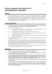 Immobilisations corporelles - Normes d'information financière et de ...