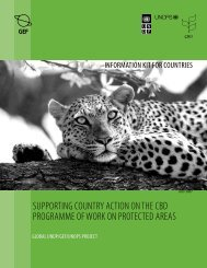 Supporting Country Action on the CBD Programme of Work on ...