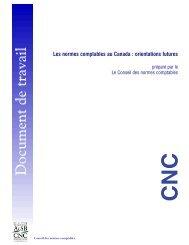 Document de travail - Normes d'information financière et de ...