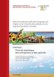 Portrait statistique des entreprises et des salariés 2008 - Agefos PME