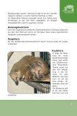 Untitled - Tierpark Chemnitz - Tierparkfreunde Chemnitz - Seite 5