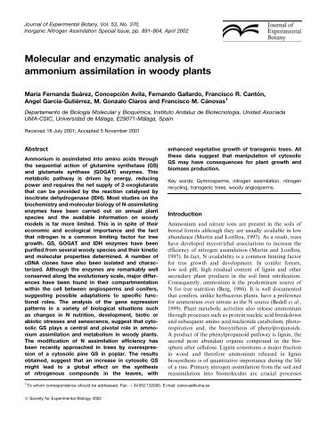 Molecular and enzymatic analysis of ammonium assimilation in ...