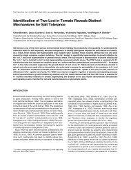 plant cell 2001.pdf - CSIC - Consejo Superior de Investigaciones ...