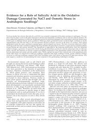 Evidence for a Role of Salicylic Acid in the ... - Plant Physiology