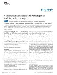 review - Experimental Oncology Graduate Study