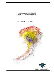 Huygens - Experimental Oncology Graduate Study