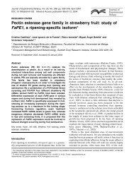 Pectin esterase gene family in strawberry fruit - Journal of ...