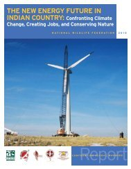 The New Energy Future in Indian Country - Tribal Energy and ...