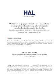 On the use of geophysical methods to characterize heterogeneities ...