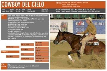 COWBOY DEL CIELO