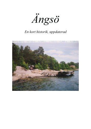 En kort historik, uppdaterad - Gränö