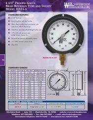 Weksler Glass Process Gauges - Kodiak Controls
