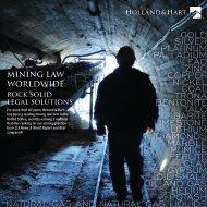 gold silver platinum palladium lead zinc copper ... - Holland & Hart