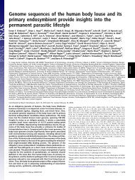 Genome sequences of the human body louse and its primary ...