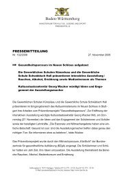 Präsentation am 27.11.2008 - www.gesunde-schule-bw.de