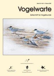 Vogelwarte Bd. 45, 2007 - DO-G