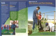 brochure in PDF format - College of Agriculture - Montana State ...