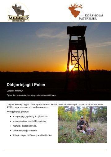 DÃ¥hjortejagt i Polen