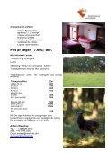 Sikajagt Sydengland - Korsholm Jagtrejser - Page 2
