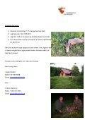 Bukkejagt i Polen 2010 - Korsholm Jagtrejser - Page 3