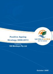 Positive Ageing Strategy 2008-2013 - Moira Shire Council