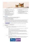 TUNTURISSA TAPAHTUU JOULUKUUSSA 2011 - Pyhä - Page 2