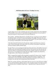 Grave Tending Services Flyer