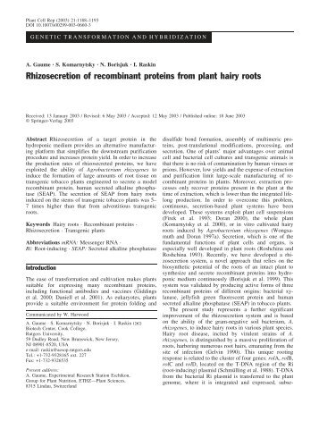 Rhizosecretion of recombinant proteins from plant hairy ... - Springer