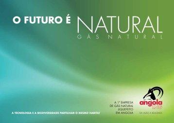 Gás Natural - Angola LNG