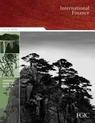 Brochure (US Version) - Financial Guaranty Insurance Company