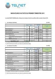 Indicateurs d'activité au premier semestre 2013 - Telnet
