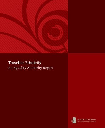 Traveller Ethnicity - Irish Health Repository