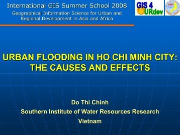 URBAN FLOODING IN HO CHI MINH CITY: THE CAUSES AND ...