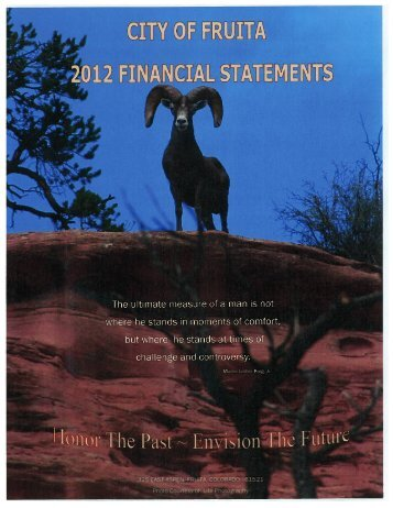 2012 Financial Statements - City of Fruita