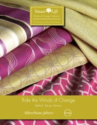 Ride the Winds of Change - Silver State Inc.