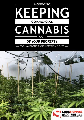 landlord-cannabis-booklet