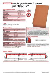 La tuile grand moule à pureau plat NIBRA® - S 9 - Nelskamp