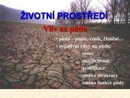 ZIPR 03-puda.pdf