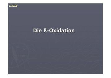 Die ß-Oxidation