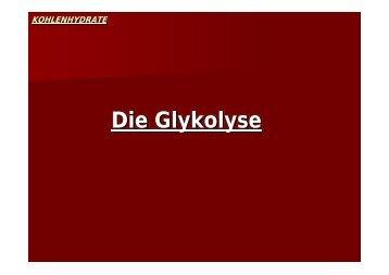 Die Glykolyse - Biochemie-trainings-camp.de