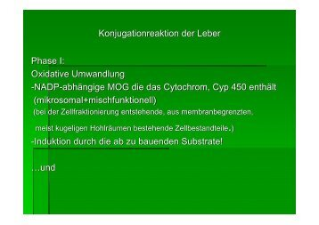 Konjugationreaktion der Leber Phase I - Biochemie-trainings-camp.de