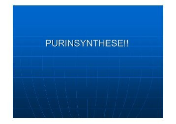 PURINSYNTHESE!! - Biochemie-trainings-camp.de