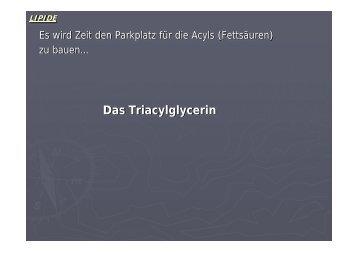 Das Triacylglycerin - Biochemie-trainings-camp.de