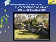 Projecto ConTIG - Esri Portugal